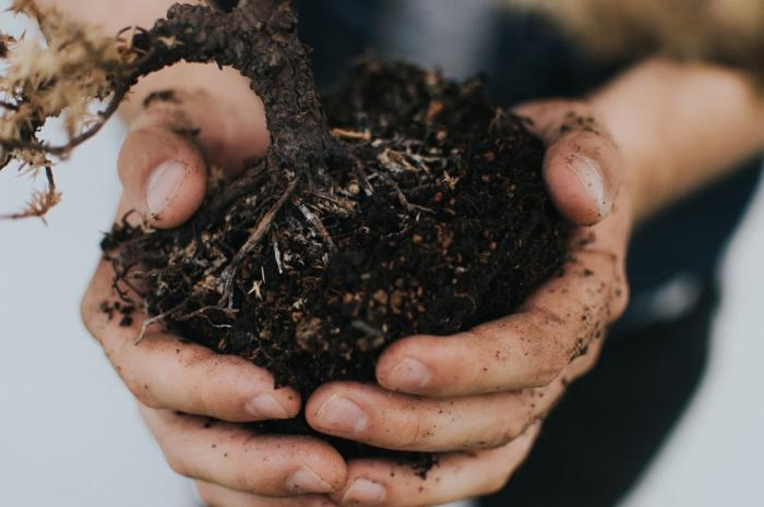 Close up of a pile of dirt being held in someone's hands